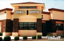 Kathmandu to get advanced vet hospital