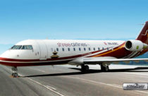 Shree Airlines to operate international chartered flights