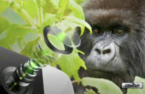 Corning Gorilla Glass with DX/DX+ announced for camera lens cover and wearables